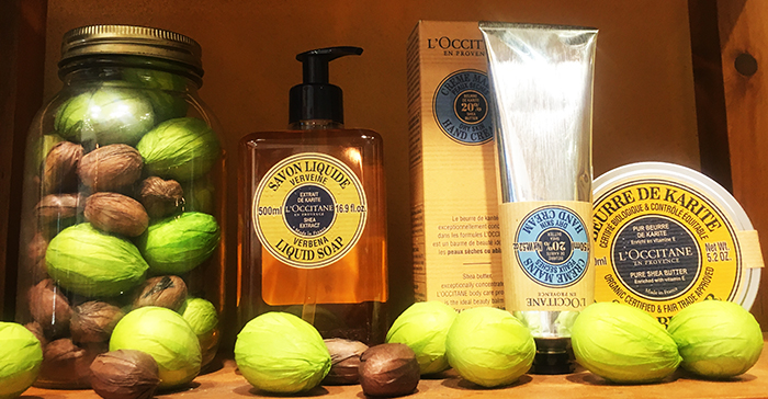 L'Occitane at Avalon Alpharetta