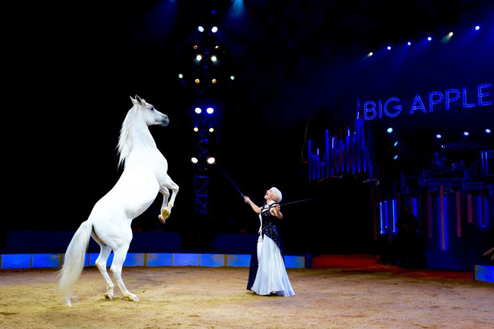 Photo by Julianna M Crawford Big Apple Circus